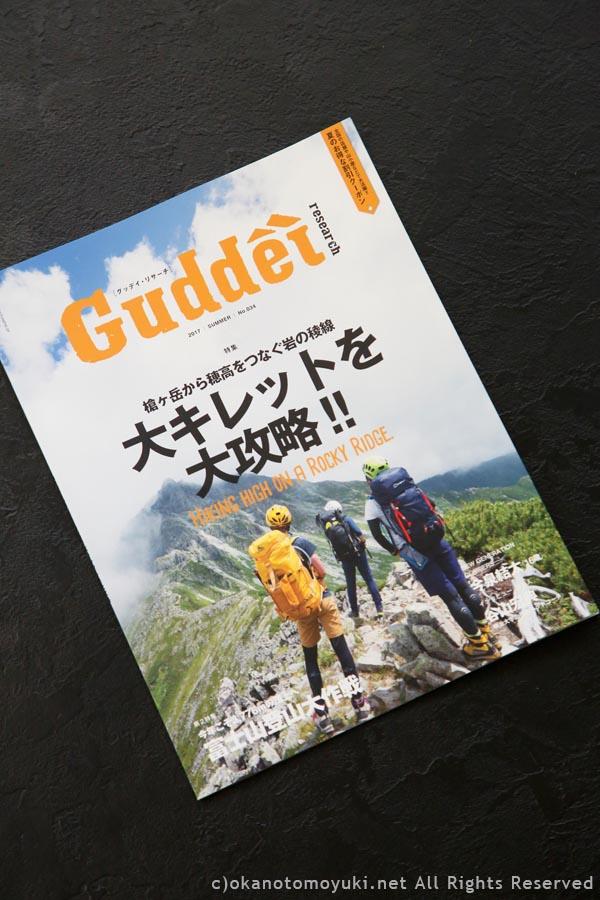 Guddéi research 2017 SUMMER