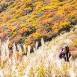 山と溪谷 2019年10月号
